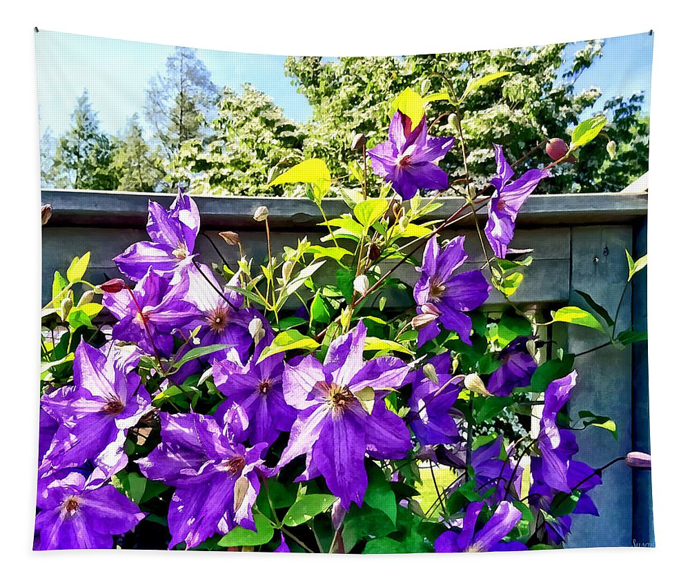 Clematis Tapestry featuring the photograph Solina Clematis On Fence by Susan Savad