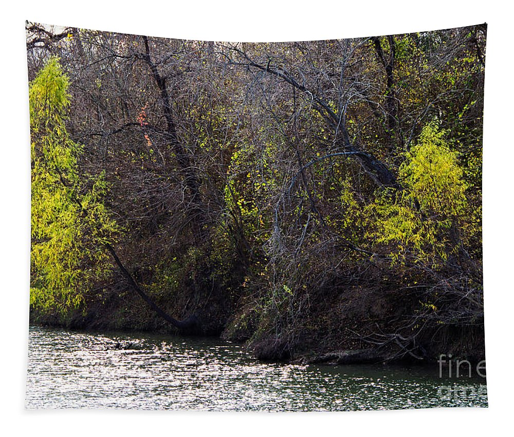 River Tapestry featuring the photograph Somewhere On The Guadalupe by Gary Richards