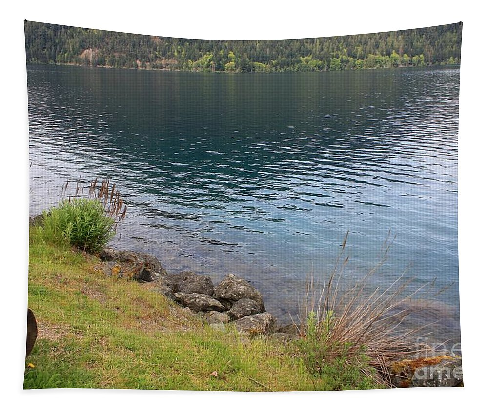 Lake Tapestry featuring the photograph Soothing Lake Crescent by Carol Groenen