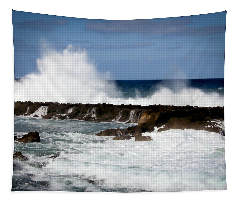 Hawaii Tapestry featuring the photograph Sounds Of Hawaii by Karen Wiles