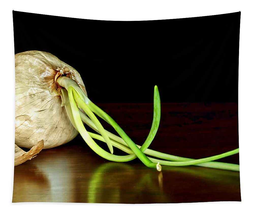 Onion Tapestry featuring the photograph Soupe Du Jour by Nikolyn McDonald