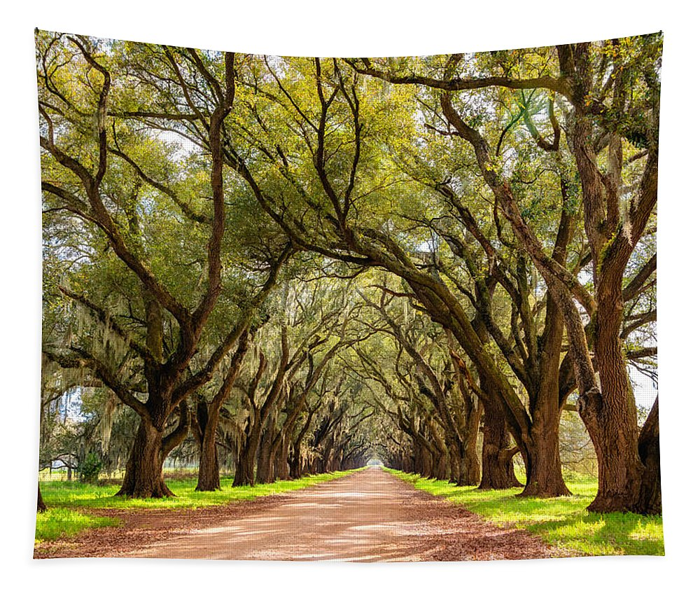 Evergreen Plantation Tapestry featuring the photograph Southern Journey Paint by Steve Harrington