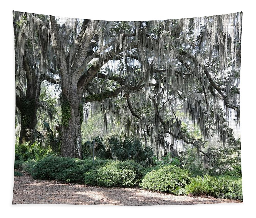 Live Oaks Tapestry featuring the photograph Southern Trees by Carol Groenen