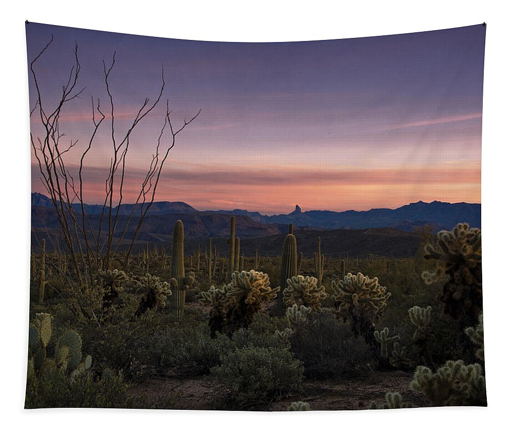 Sunset Tapestry featuring the photograph Southwest Serenity by Saija Lehtonen