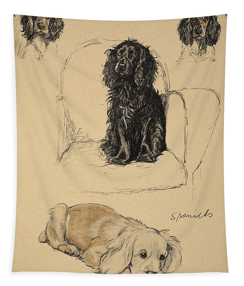 Dog Tapestry featuring the drawing Spaniels, 1930, Illustrations by Cecil Charles Windsor Aldin