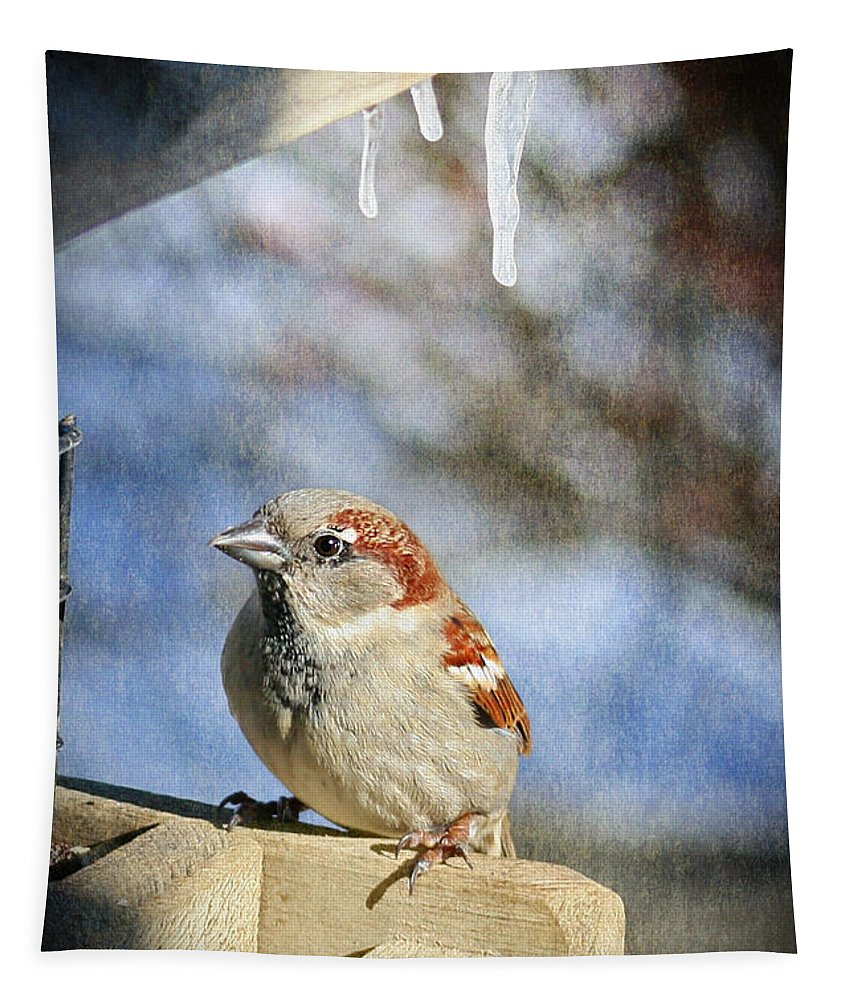 Bird Tapestry featuring the photograph Sparrow 5  by Susan McMenamin