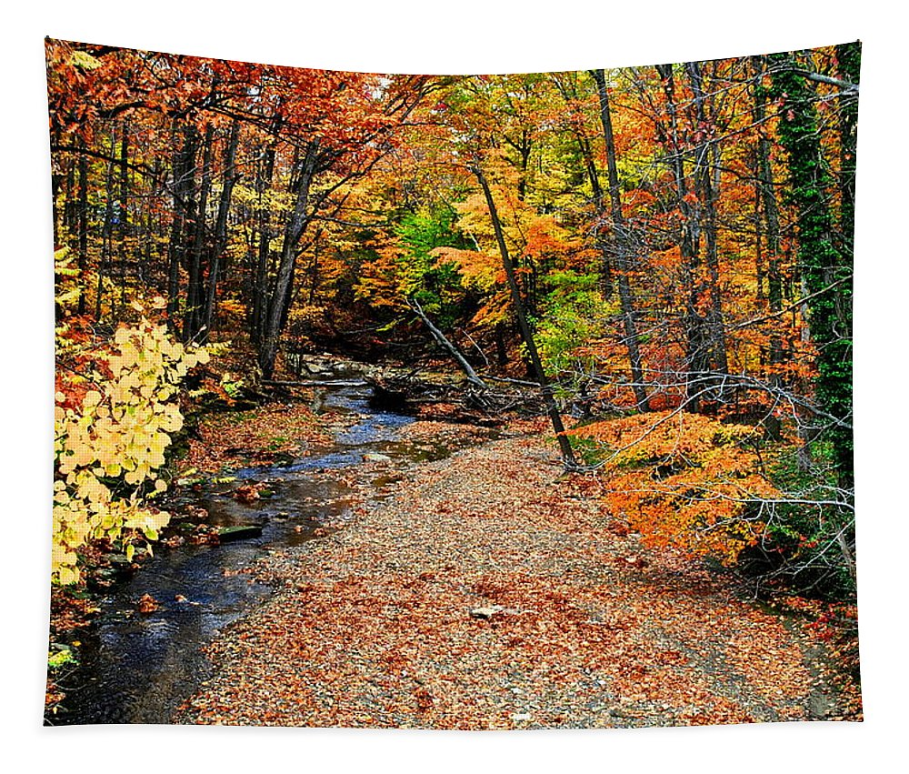 Autumn Tapestry featuring the photograph Spectrum Of Color by Frozen in Time Fine Art Photography