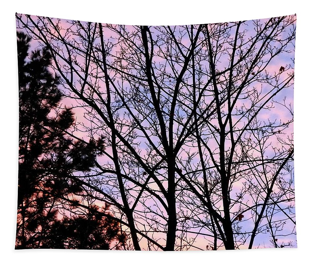 Splendid Silhouette Tapestry featuring the photograph Splendid Silhouette by Will Borden