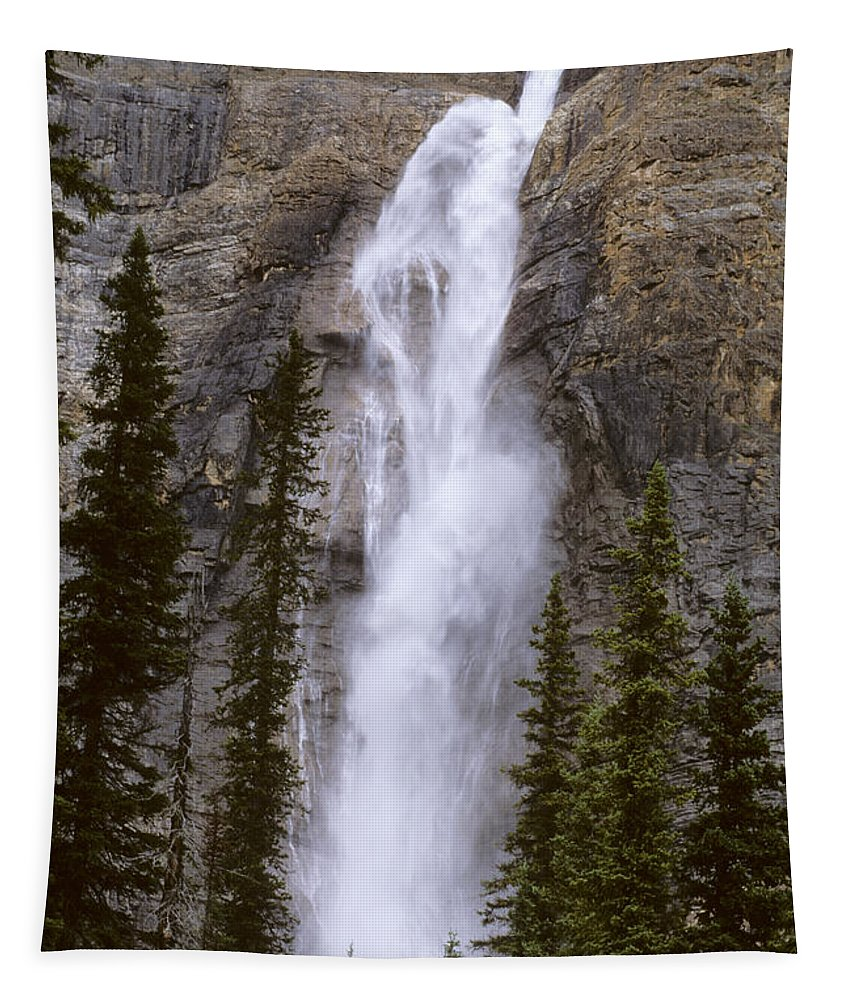 Nature Tapestry featuring the photograph Splendor Of Takakkaw Falls by Bob Christopher