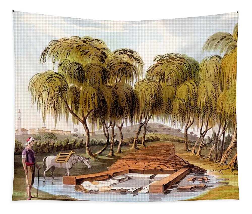 Bournabashi Tapestry featuring the drawing Spring At The Source Of The Skamander by Sir William Gell