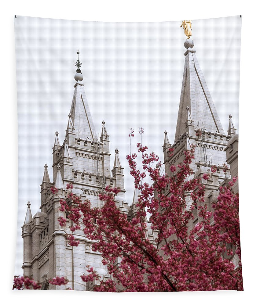 Spring At The Temple Tapestry featuring the photograph Spring At The Temple by Chad Dutson