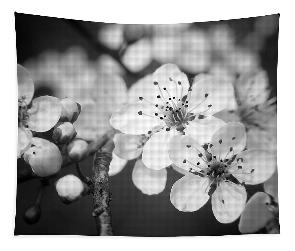 B&w Tapestry featuring the photograph Spring Blooms 6690 by Timothy Bischoff