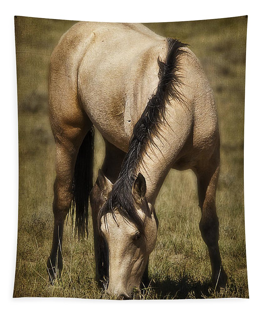 Spring Creek Basin Wild Horses Tapestry featuring the photograph Spring Creek Basin Wild Horse Grazing by Priscilla Burgers