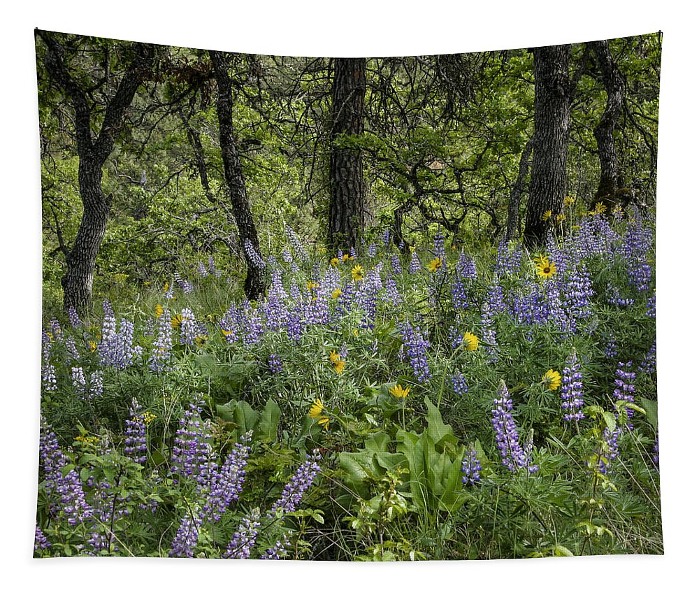 Color Tapestry featuring the photograph Spring Flowers In The Columbia Gorge by Jean Noren