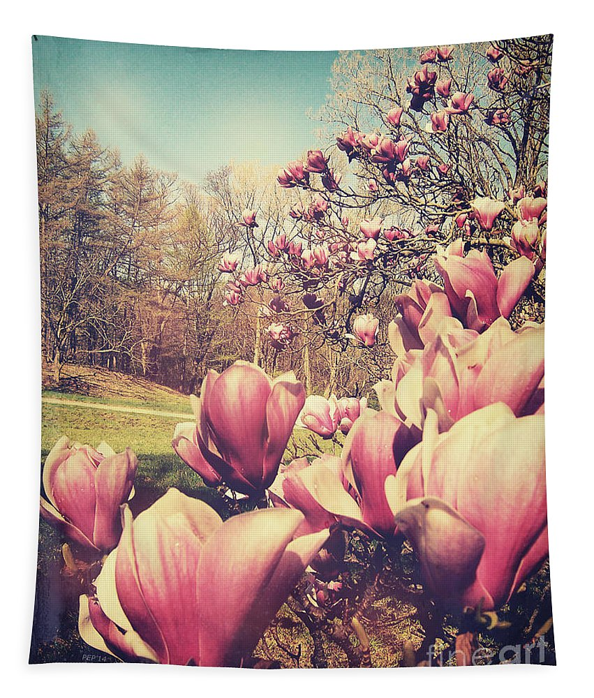 Flowers Tapestry featuring the photograph Spring Flowers by Phil Perkins