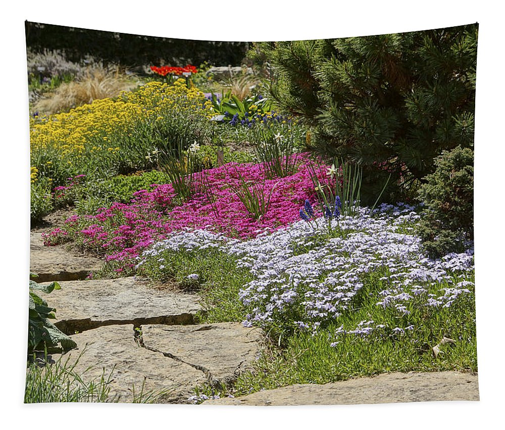 Spring Tapestry featuring the photograph Spring In The Garden Dsc03678 by Greg Kluempers