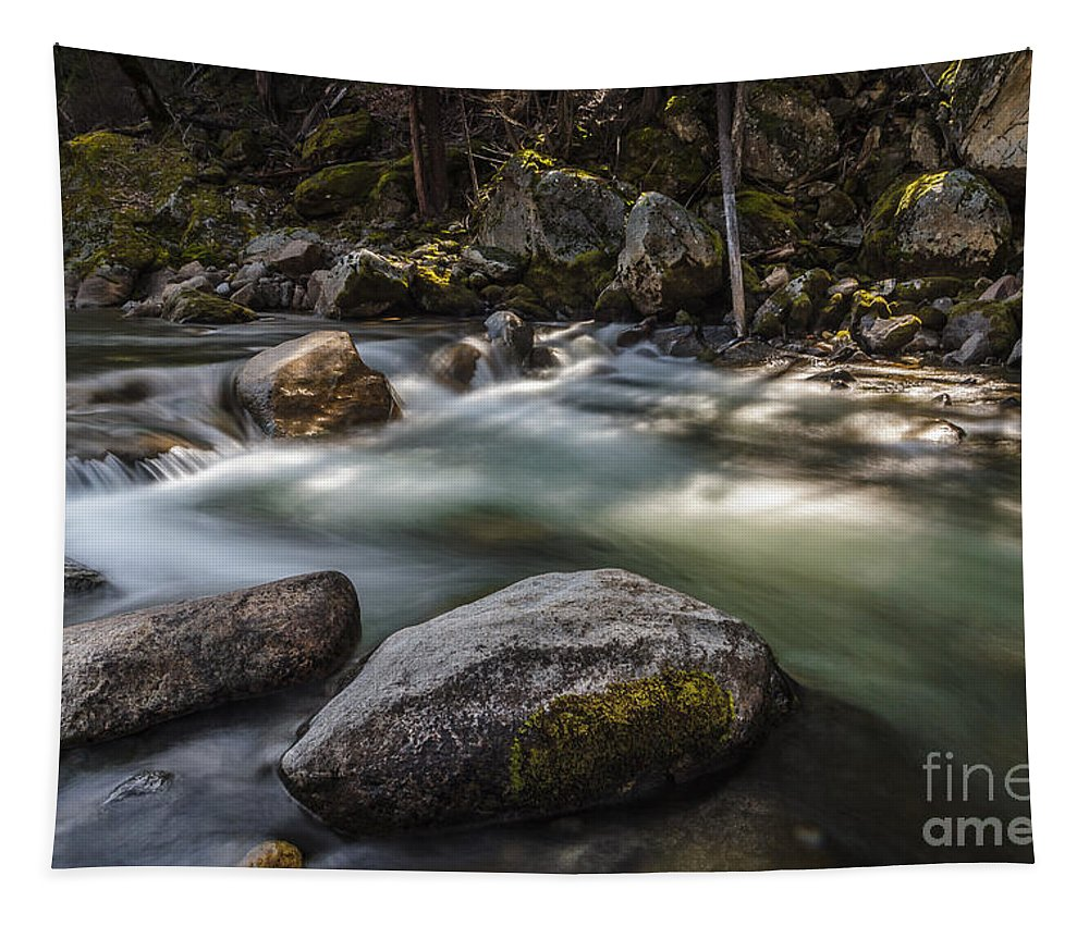 Spring Runoff Tapestry featuring the photograph Spring Runoff by Mitch Shindelbower