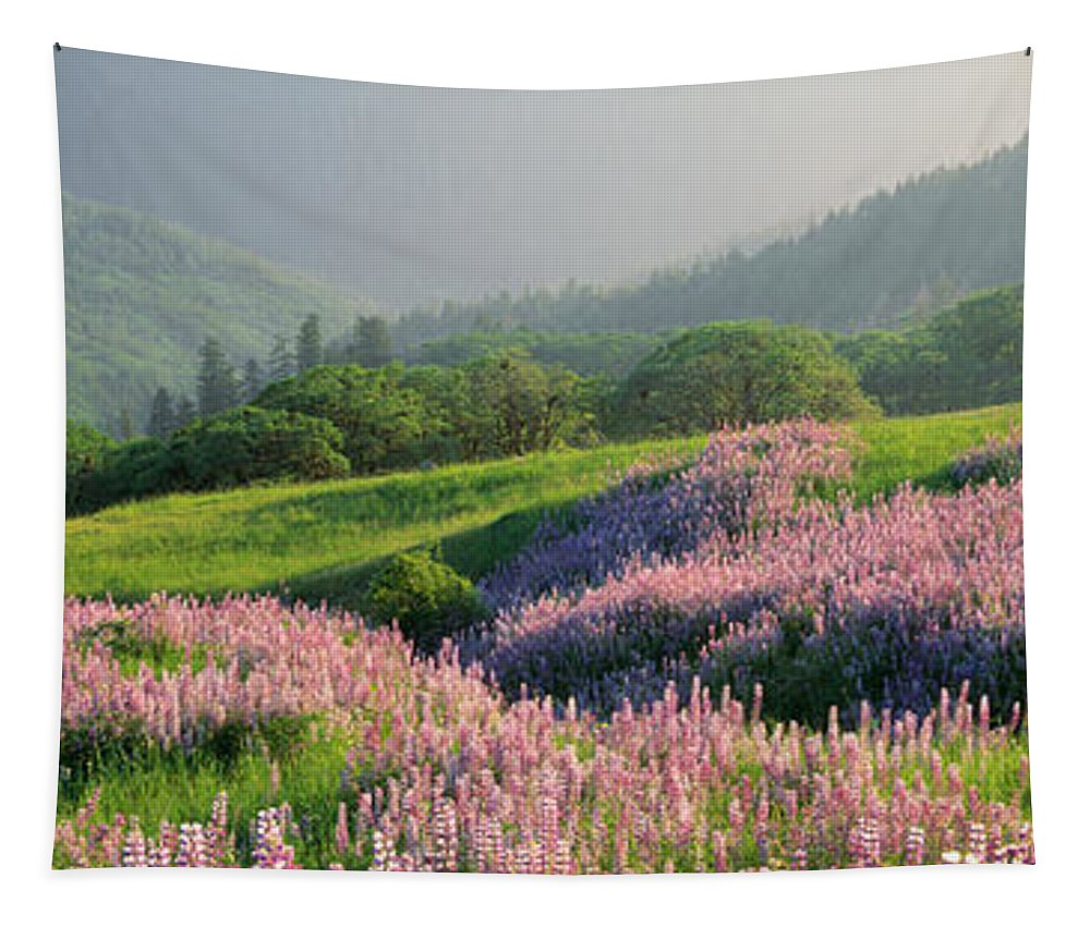 Photography Tapestry featuring the photograph Spring Yellowstone National Park Wy by Panoramic Images