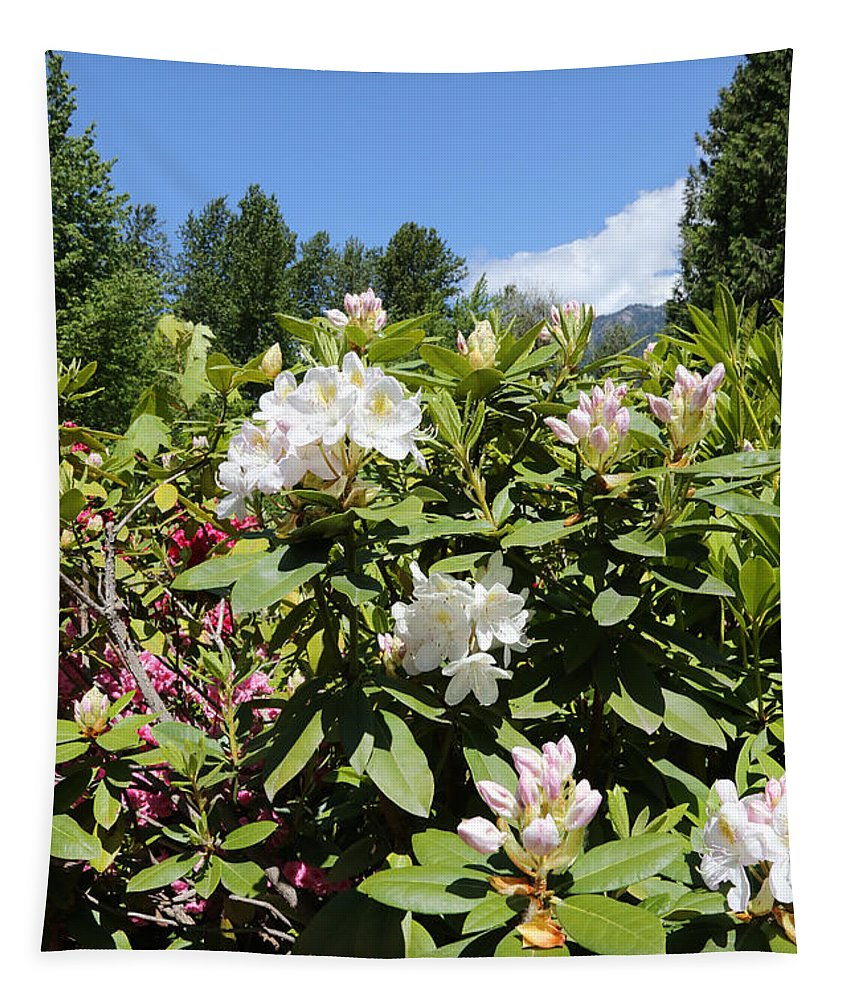 Spring Tapestry featuring the photograph Springtime In The Cascades by Carol Groenen