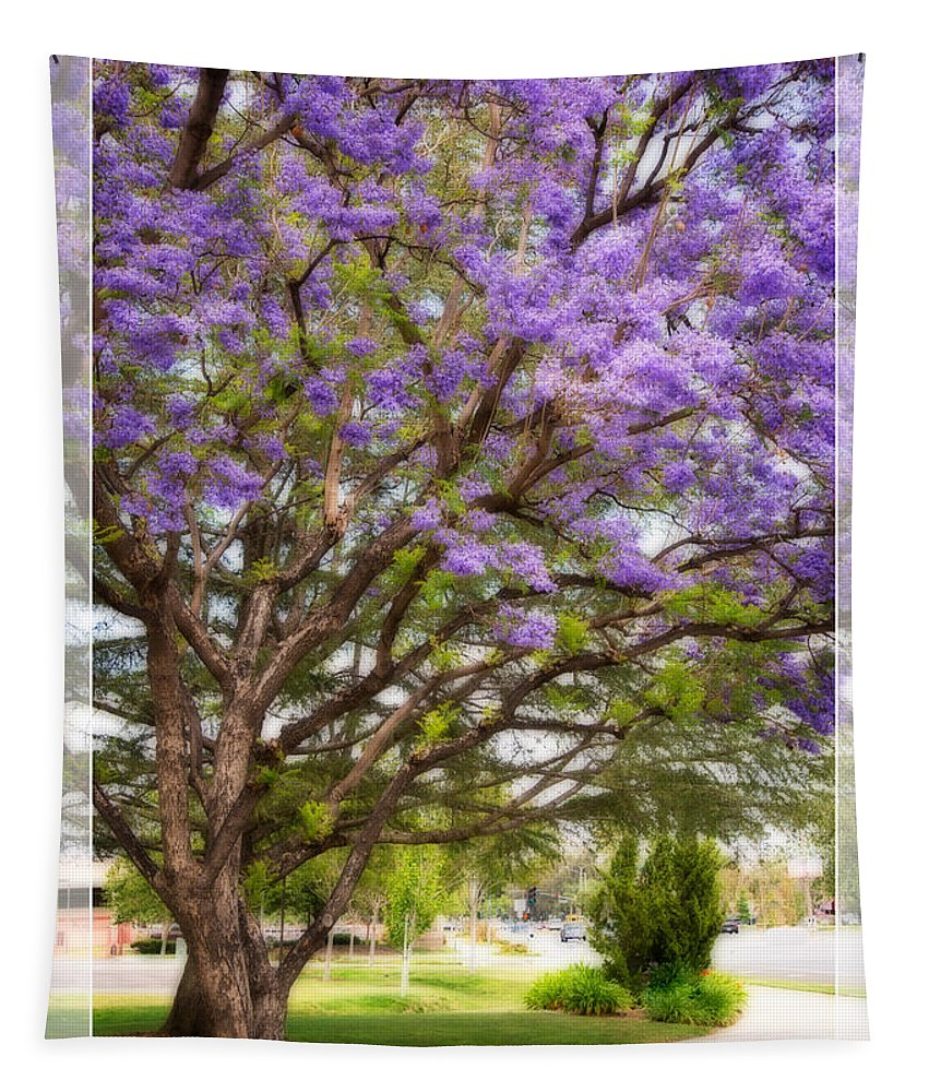 Spring Tapestry featuring the photograph Springtime Jacaranda Tree by Lynn Bauer