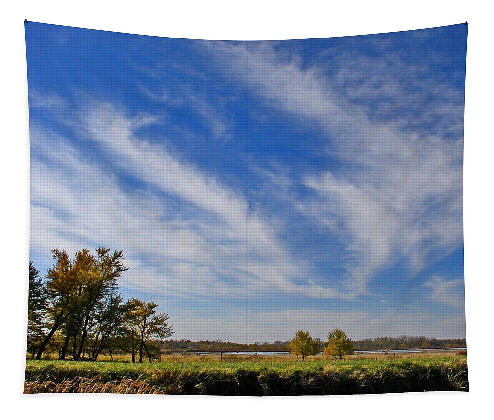 Landscape Tapestry featuring the photograph Squaw Creek Landscape by Steve Karol