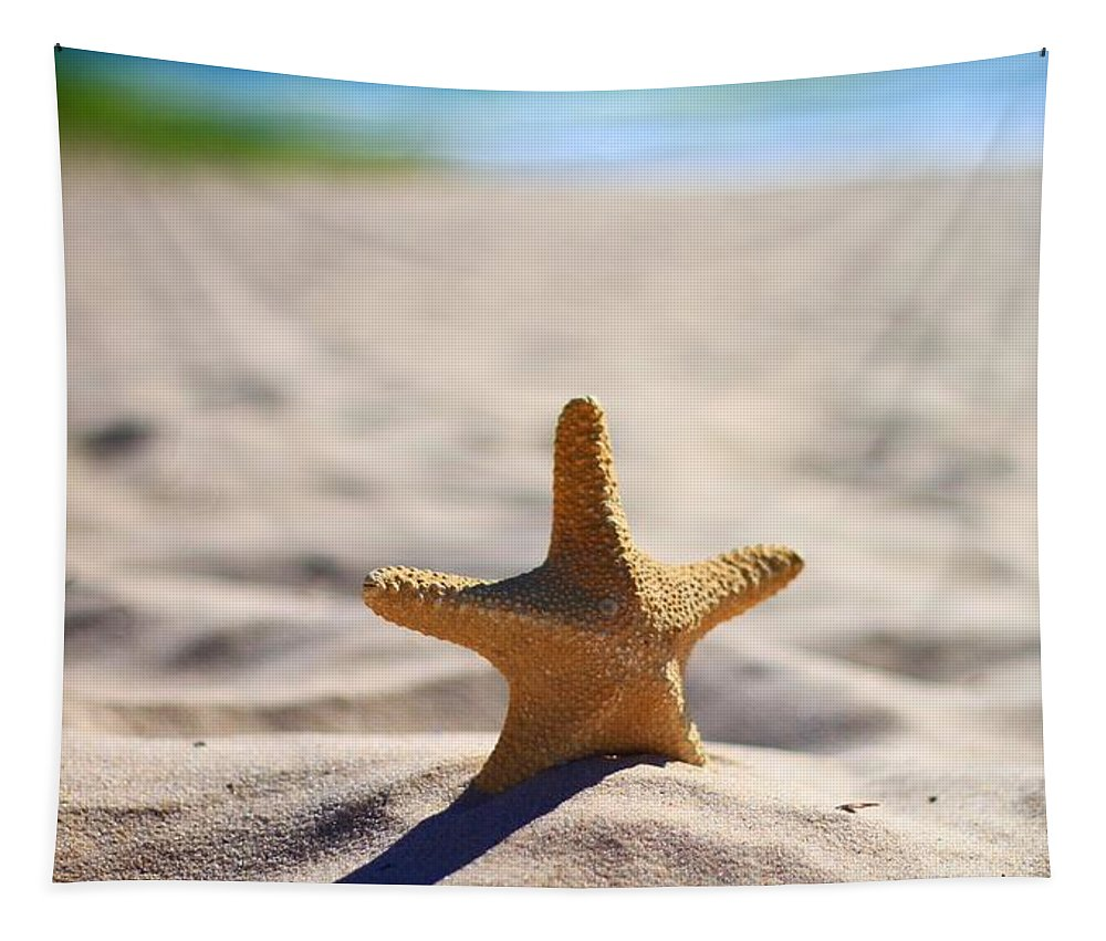 Starfish On The Beach Tapestry featuring the photograph Starfish On The Beach by Dan Sproul