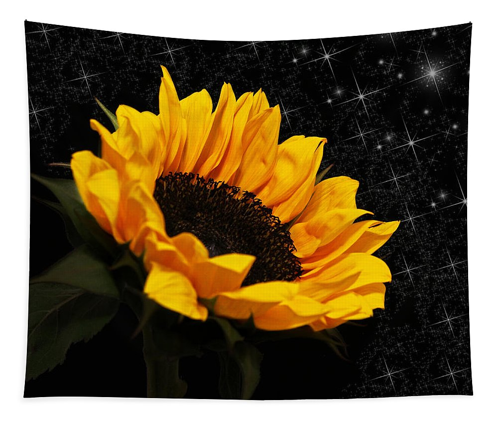 Sunflower Tapestry featuring the photograph Starlight Sunflower by Judy Vincent