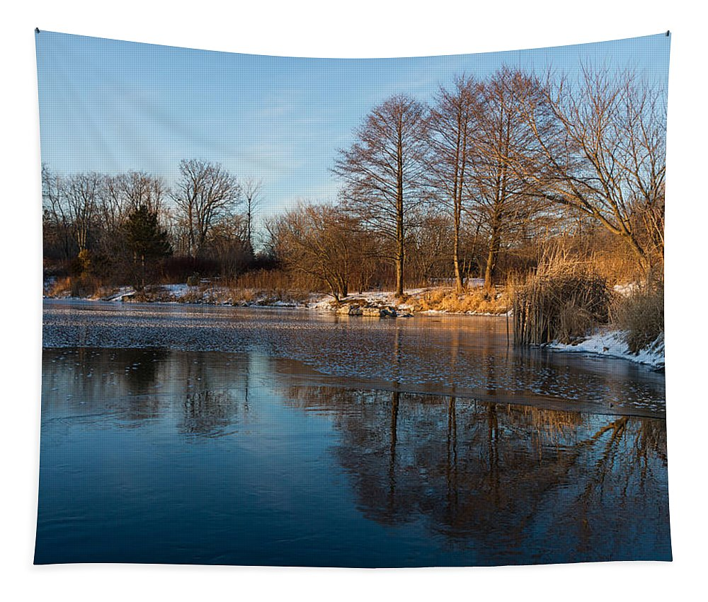 Still Tapestry featuring the photograph Still And Early - Icy Reflections With A Touch Of Snow by Georgia Mizuleva