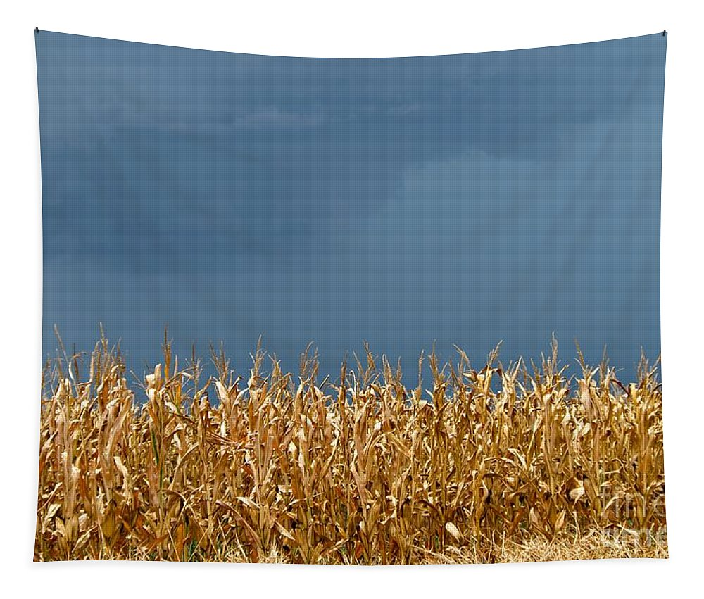 Stormy Tapestry featuring the photograph Stormy Corn by Gary Richards