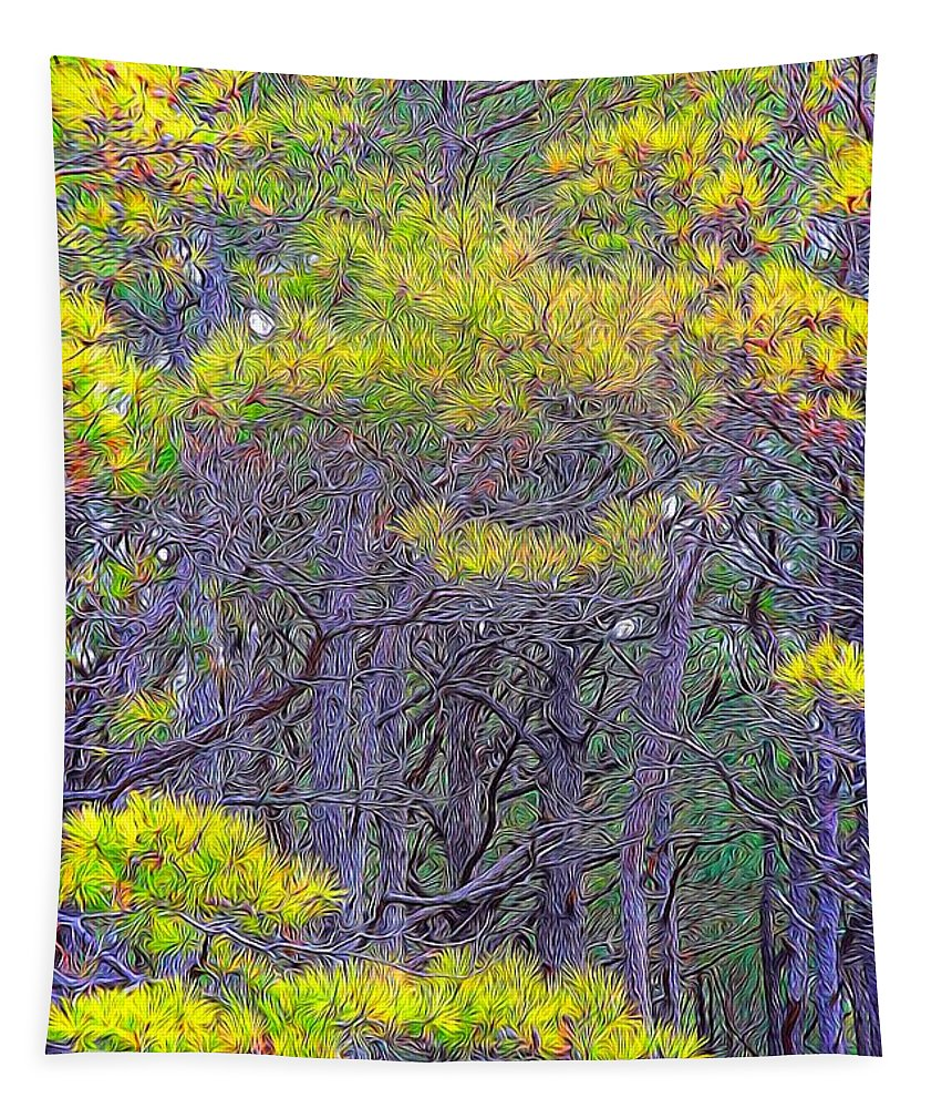 Pine Trees Tapestry featuring the photograph Straggly Pines by Alice Gipson