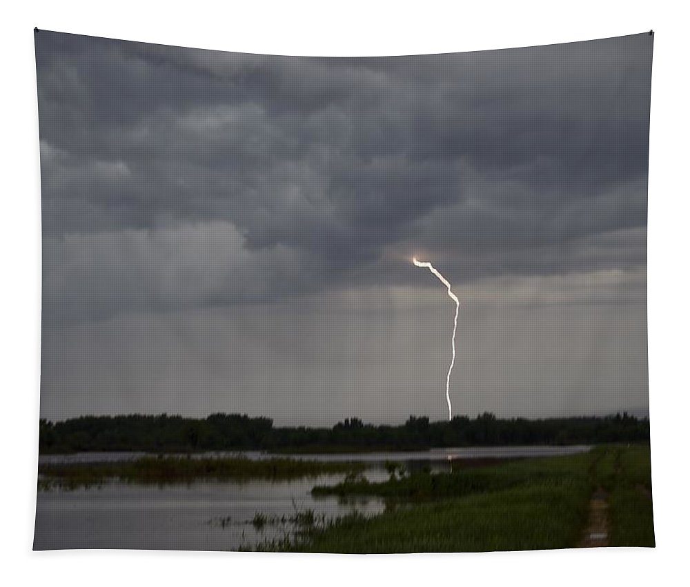Lightning Tapestry featuring the photograph Striking Big Marsh by Bonfire Photography