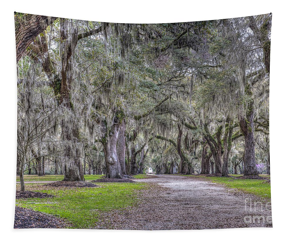 Fenwick Hall Tapestry featuring the photograph Plantation Drive by Dale Powell