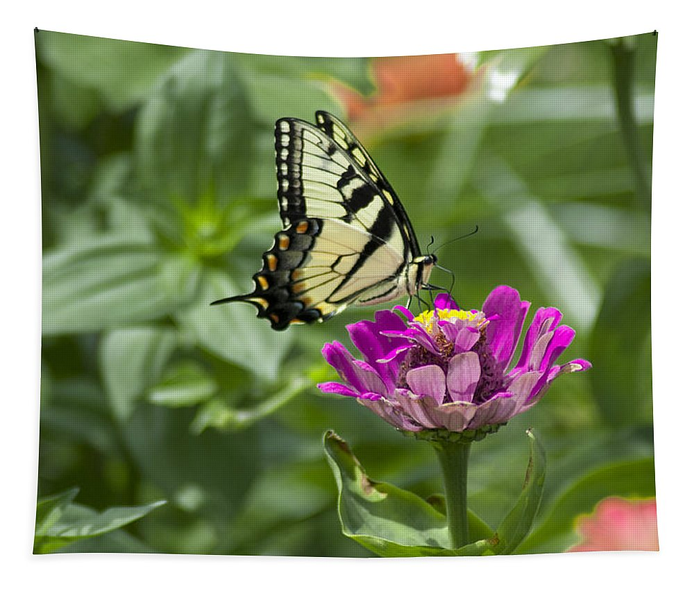 Summer Tapestry featuring the photograph Summer Butterfly by Bill Cannon