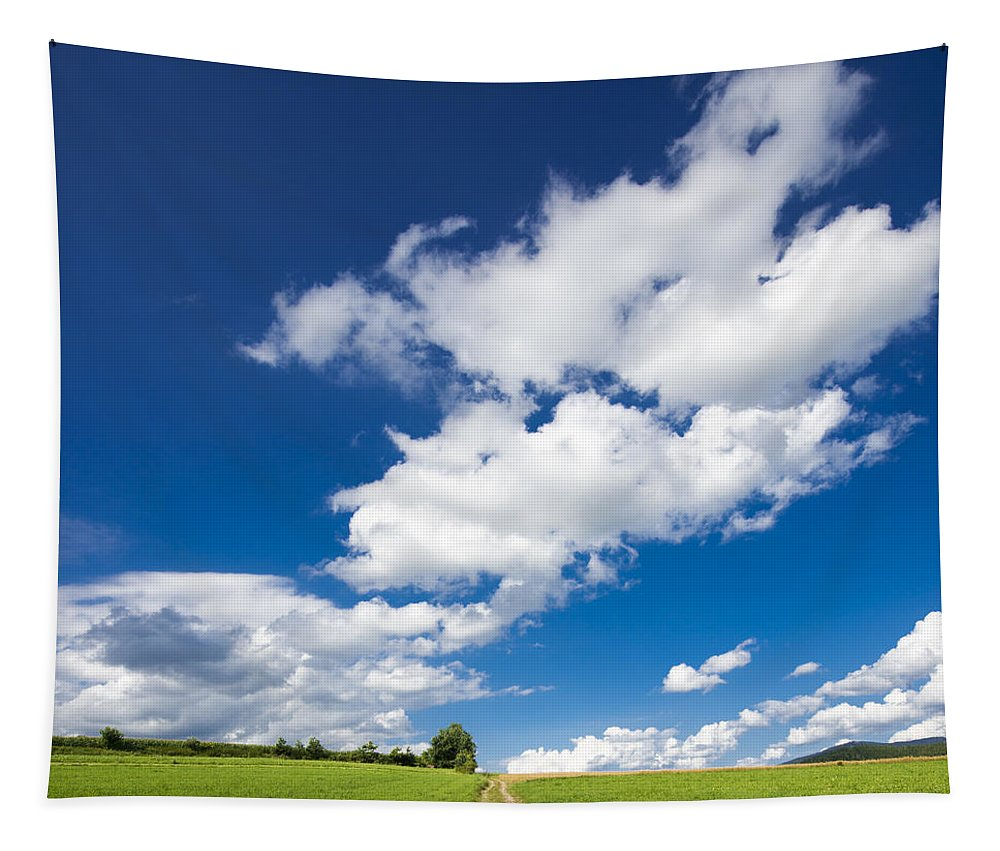 Summer Tapestry featuring the photograph Summer Day Blue Sky Green Grass by Matthias Hauser