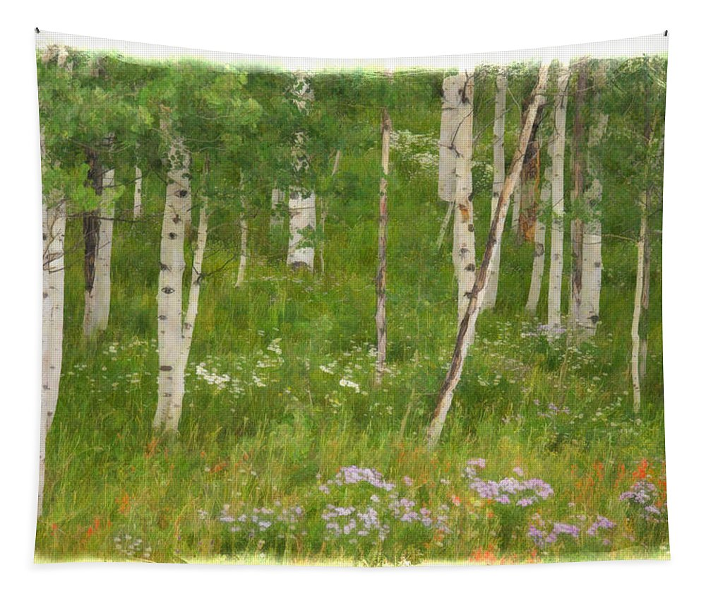 Aspen Grove Tapestry featuring the photograph Summer In The Colorado Mountains by Priscilla Burgers