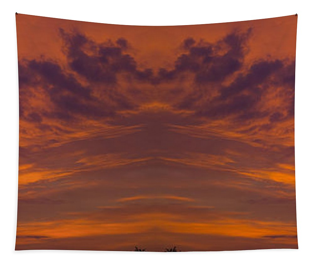 Sun Tapestry featuring the photograph Summer Sunrise Over Jackson Michigan Mirror Image by Thomas Woolworth
