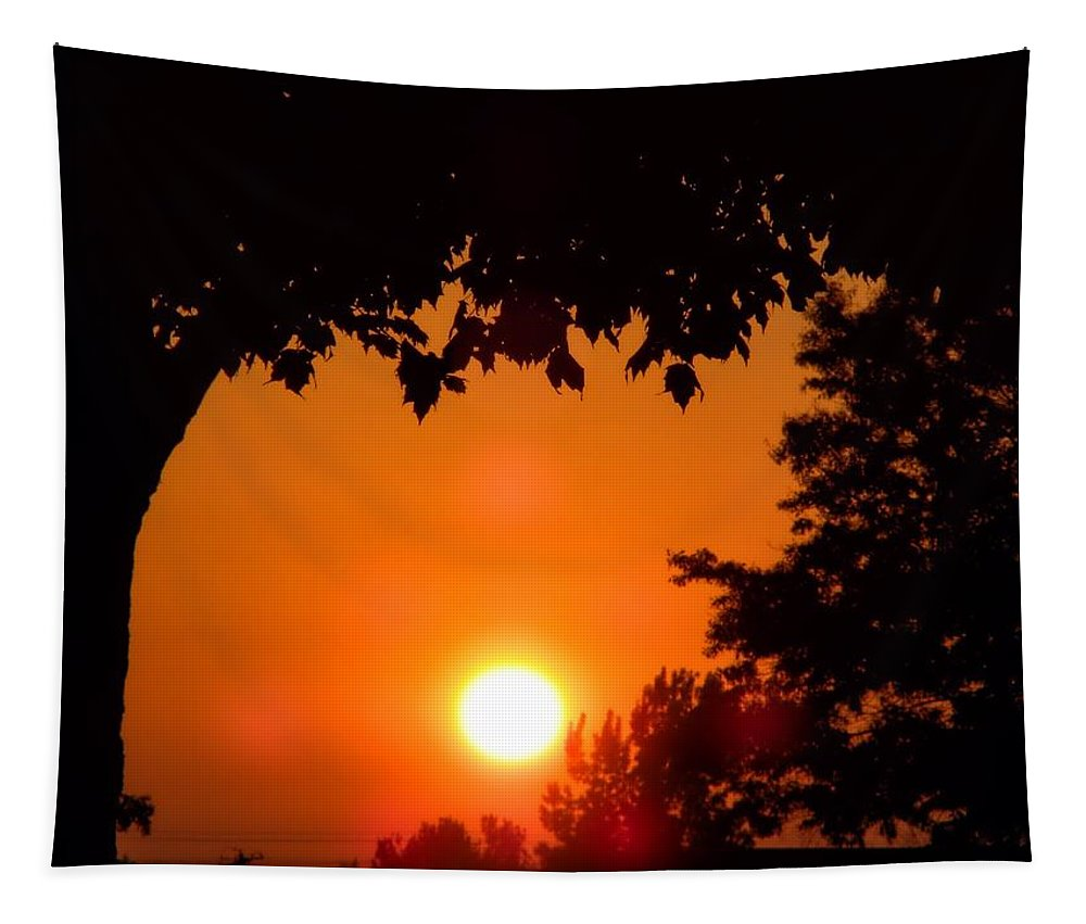 Sun Tapestry featuring the photograph Summer Sunrise Right Side by Thomas Woolworth