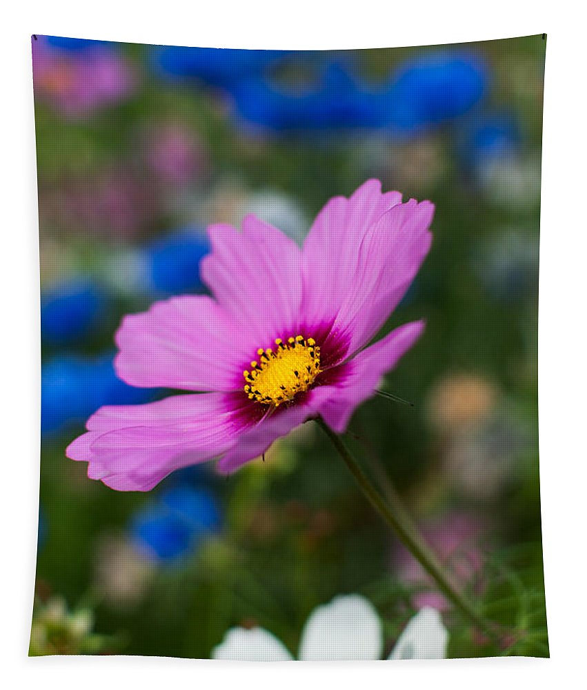 Flowers Tapestry featuring the photograph Summer Wild Blooms by Matt Malloy