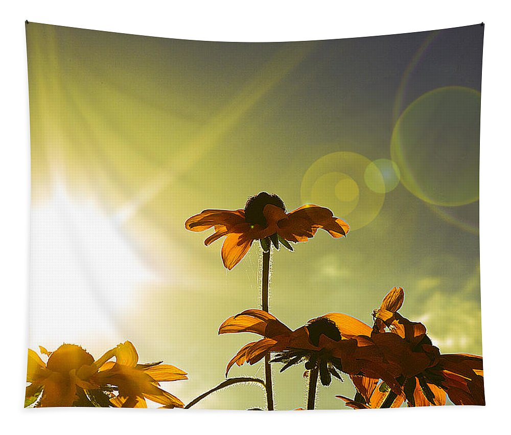 Sun Tapestry featuring the photograph Sun Lit Flowers by Tim Palmer