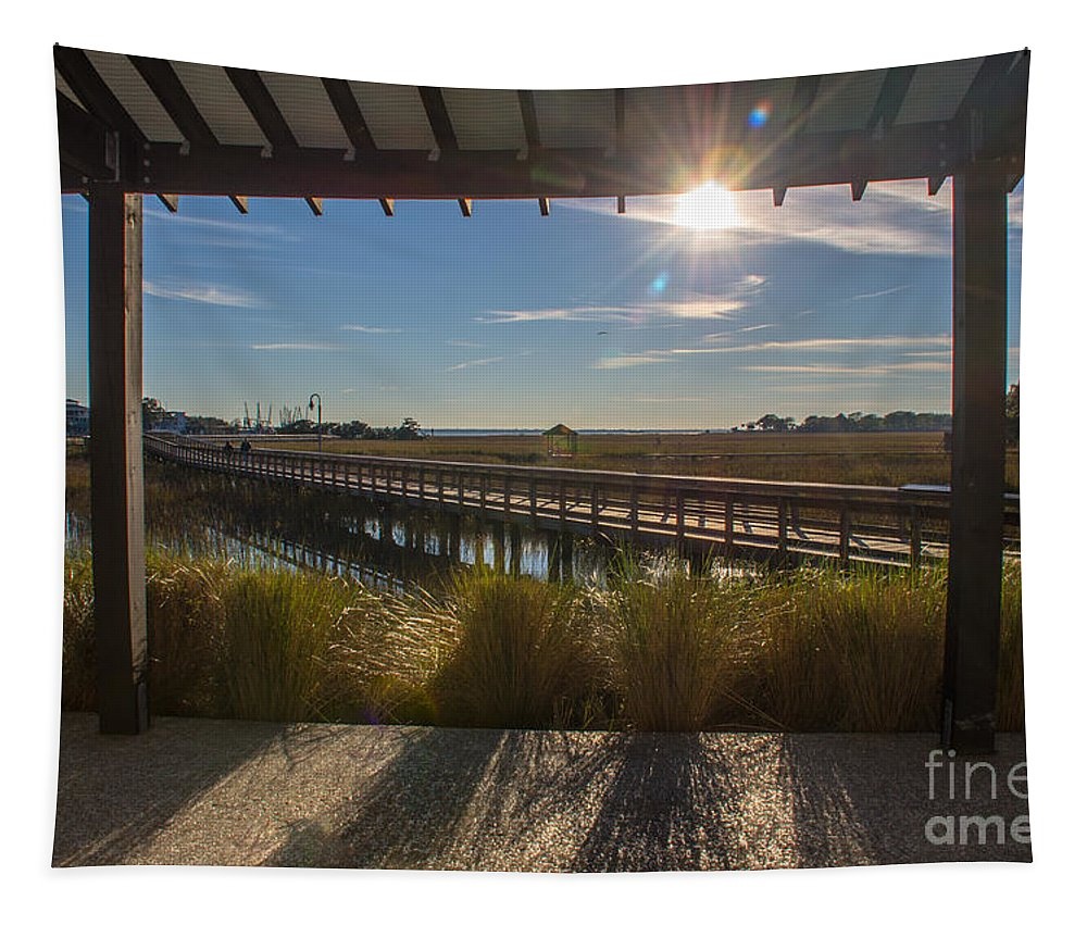 Sun Rays Tapestry featuring the photograph Sun Rays by Dale Powell