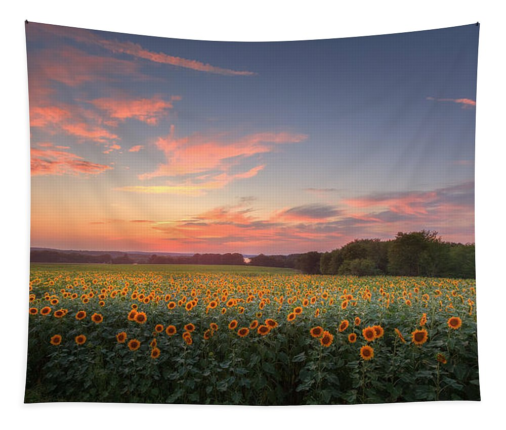 Sunflower Tapestry featuring the photograph Sunflower Sunset by Bill Wakeley