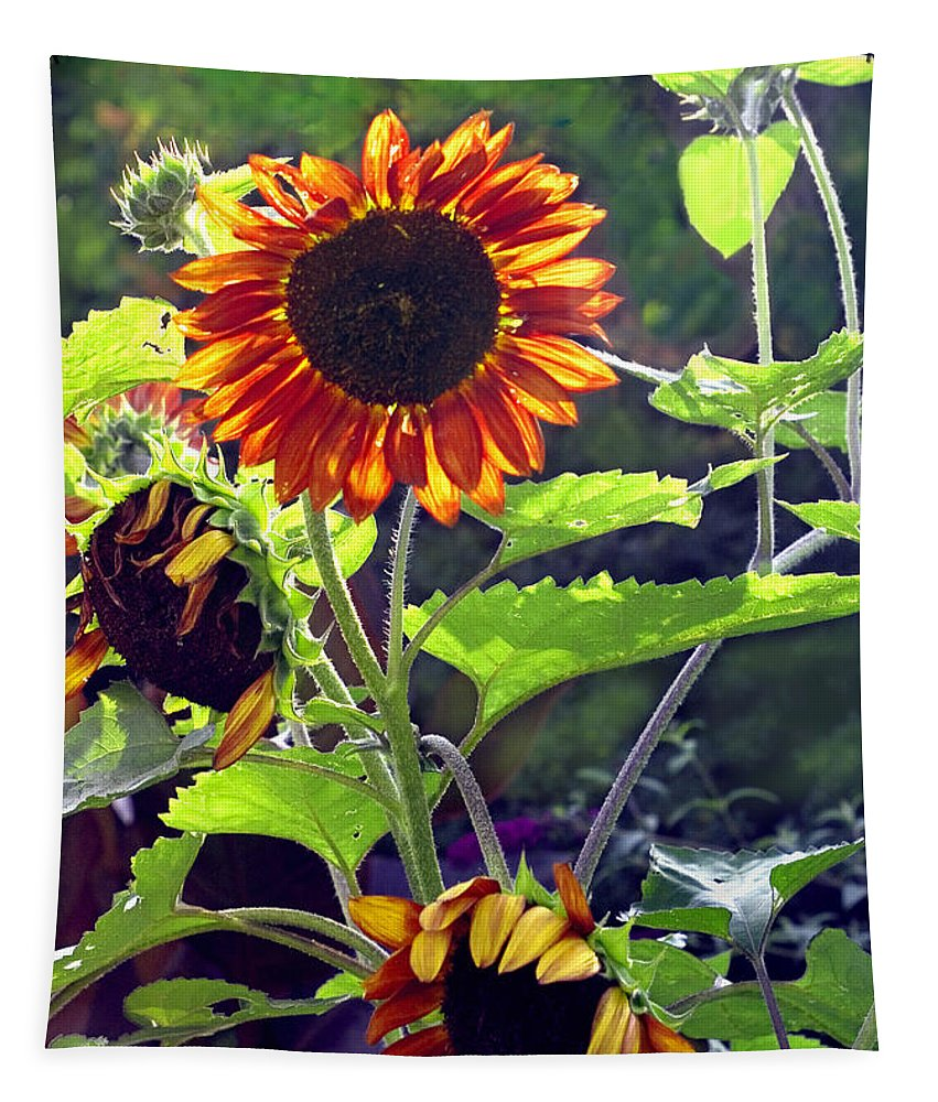 Nature Tapestry featuring the photograph Sunflowers In The Park by Madeline Ellis