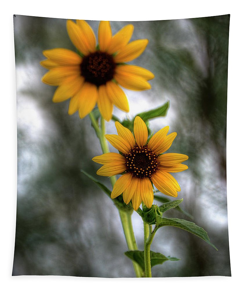 Yellow Sunflowers Tapestry featuring the photograph Sunflowers by Saija Lehtonen