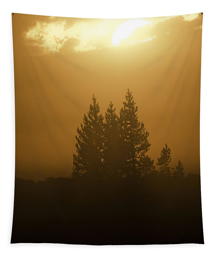 Sunrise Tapestry featuring the photograph Sunrise Fog by Wildlife Fine Art