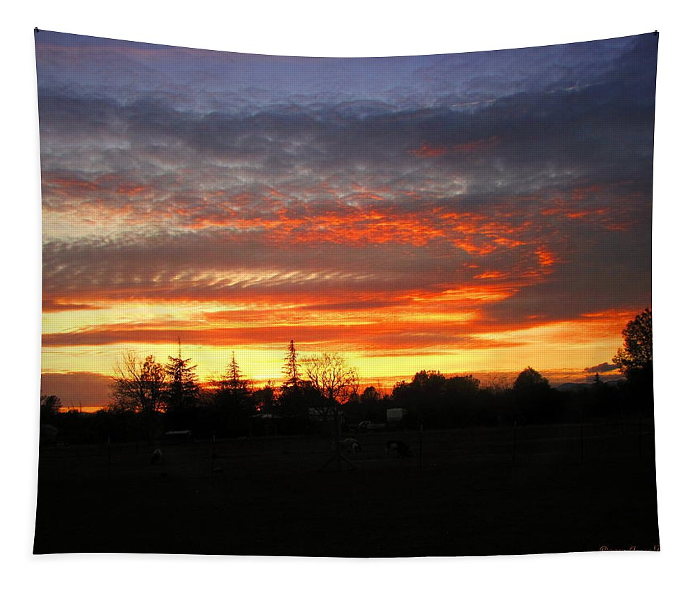 Sunset Tapestry featuring the photograph Sunset 02 28 13 by Joyce Dickens