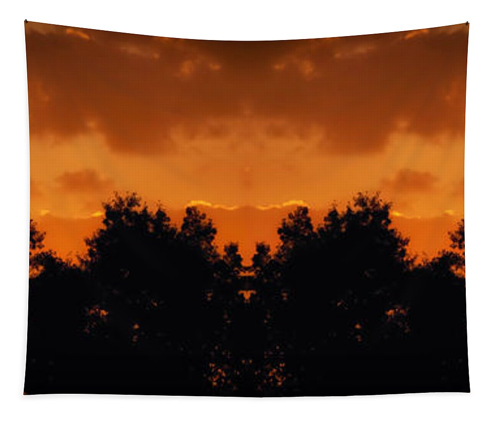 Michigan Tapestry featuring the photograph Sunset Over Jackson Michigan Mirror Image by Thomas Woolworth