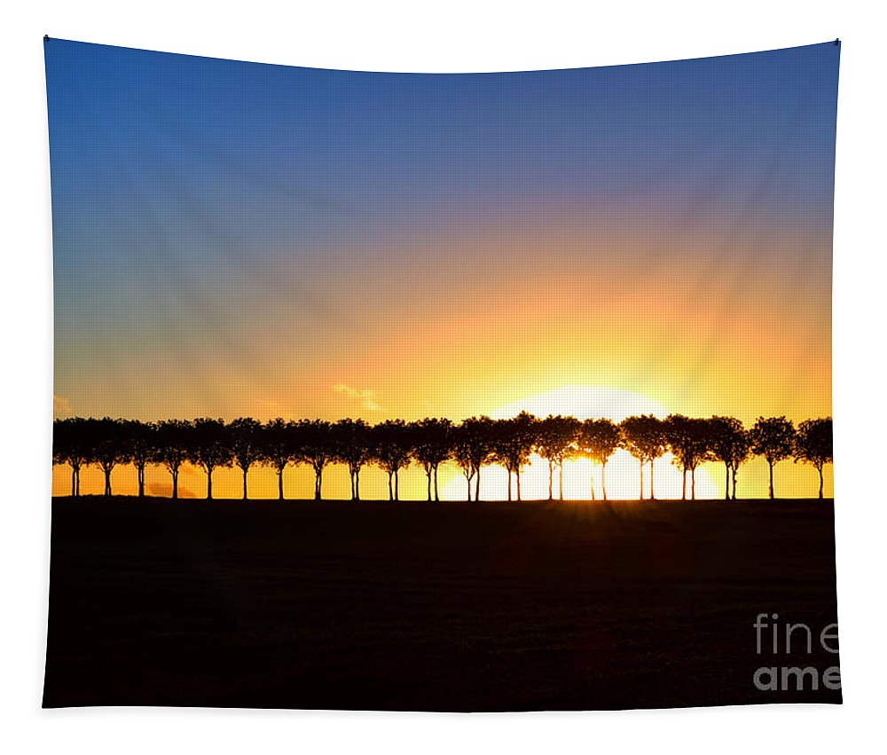France Tapestry featuring the photograph Sunset Over Tree Lined Road by Olivier Le Queinec