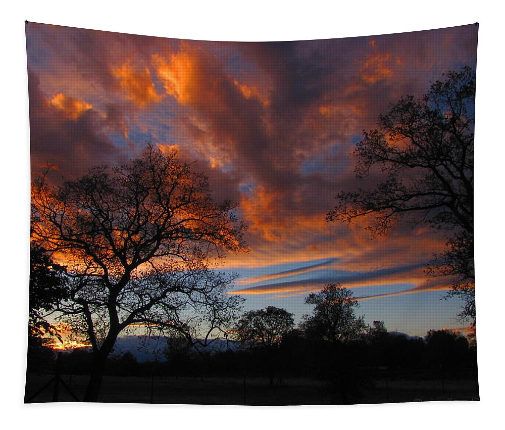 Sunset Tapestry featuring the photograph Sunset September 24 2013 by Joyce Dickens