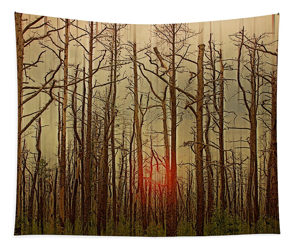 Nature Tapestry featuring the photograph Sunset Thru The Pine Barrens by Tom Gari Gallery-Three-Photography