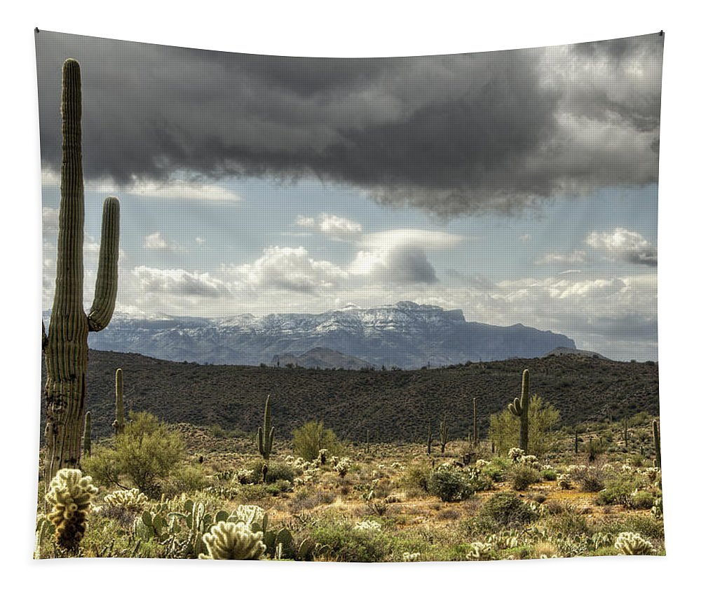 Superstition Mountains Tapestry featuring the photograph Superstition Snow by Saija Lehtonen